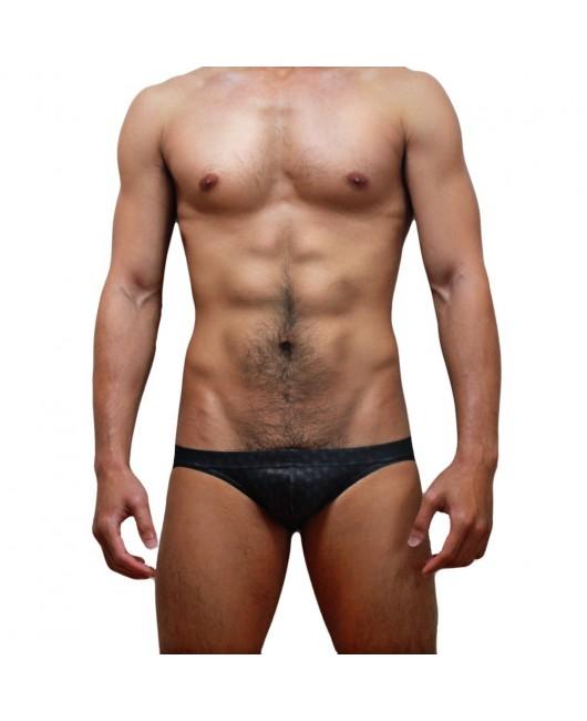 Sexy Swimming Briefs (545)